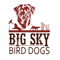 Big Sky Bird Dogs Logo